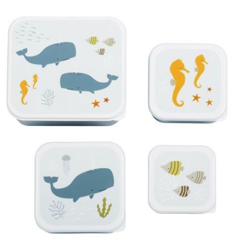 Brot- und Snackdosen Set: Ozean
